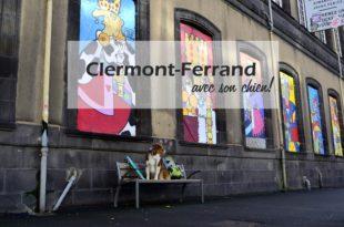 Clermont Ferrand chien